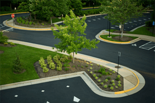 Hartley Lawn and Landscape - Commercial Lawn Service 05